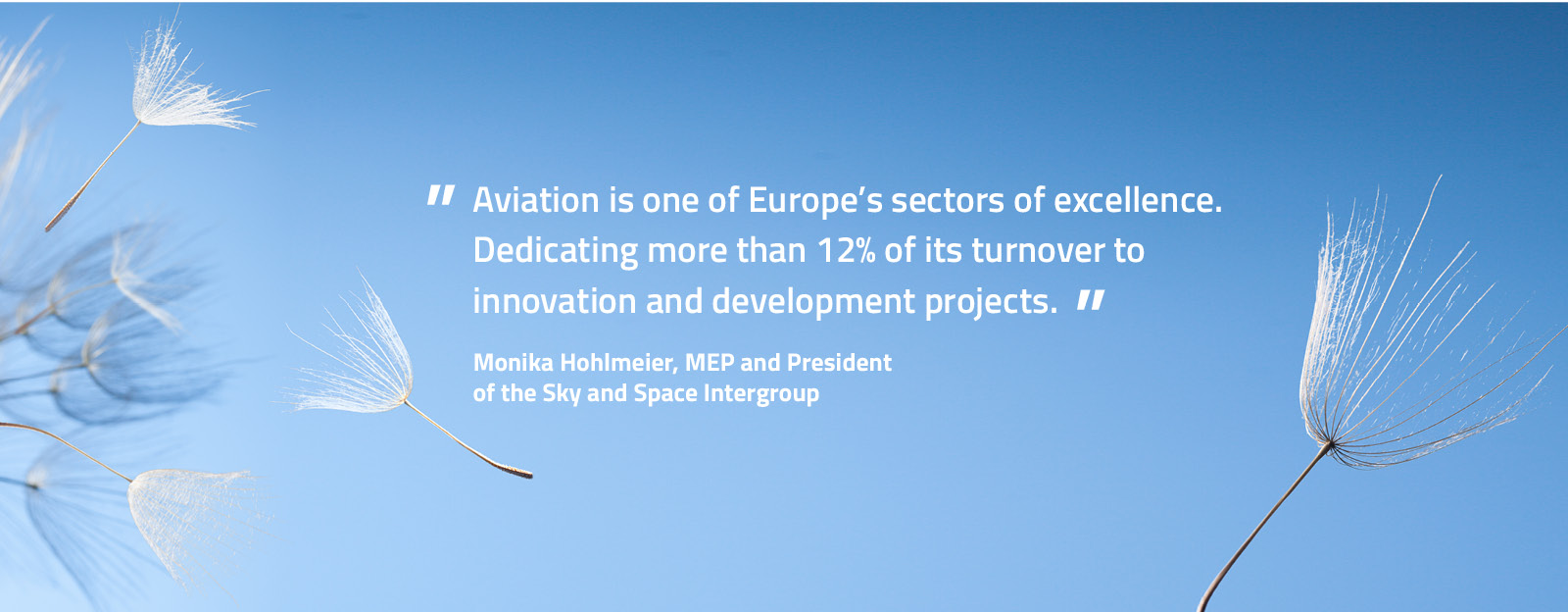 The future of aeronautical research discussed by the European Parliament Sky & Space Intergroup